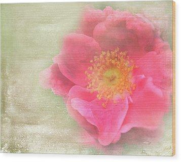 Heirloom Rose Wood Print