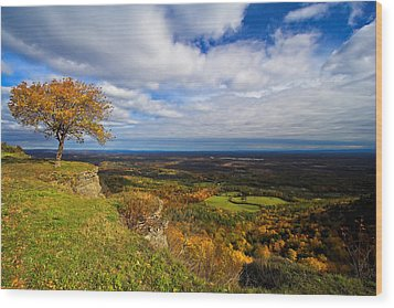 Heldeberg Fall Wood Print