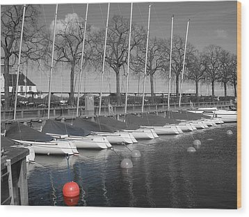 Hellerup Marina Wood Print by Michael Canning