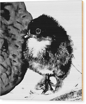 Hello Baby Chick Wood Print