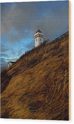 Helnaes Lighthouse Wood Print by Robert Lacy