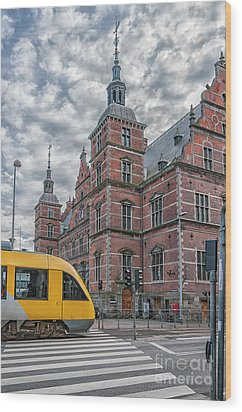 Wood Print featuring the photograph Helsingor Train Station by Antony McAulay
