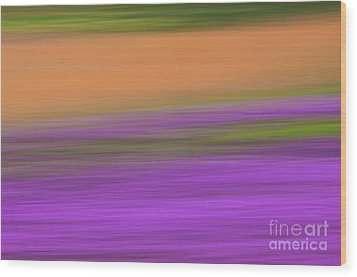 Wood Print featuring the photograph Henbit Abstract - D010049 by Daniel Dempster