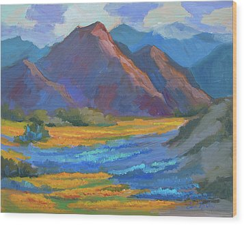 Wood Print featuring the painting Henderson Canyon Borrego Springs by Diane McClary