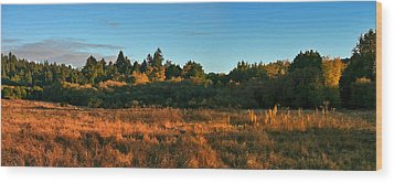 Wood Print featuring the painting Henry Cowell Sunset by Larry Darnell