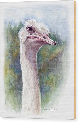 Henry The Ostrich Wood Print by Mamie Greenfield