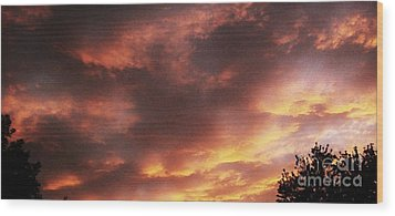Here Comes The Sun Wood Print by Marsha Heiken