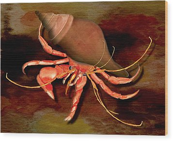 Wood Print featuring the painting Hermit Crab by Anne Beverley-Stamps