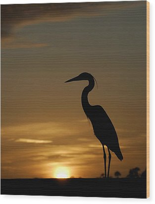Heron At Sunset Wood Print