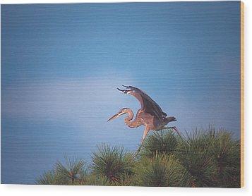 Heron In Tree Wood Print