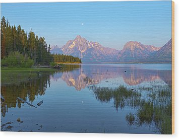 Heron On Jackson Lake Wood Print