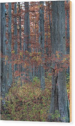 Heron Pond Twilight Wood Print by Steve Gadomski