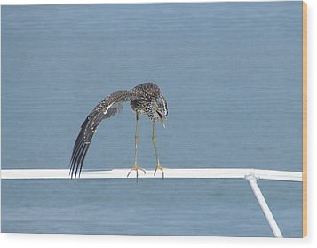 Heron Stretching Wood Print
