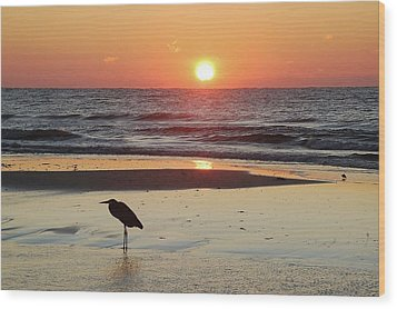 Heron Watching Sunrise Wood Print by Michael Thomas