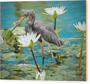 Heron With Water Lillies Wood Print
