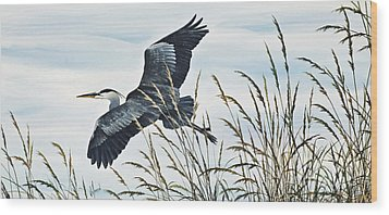Herons Flight Wood Print