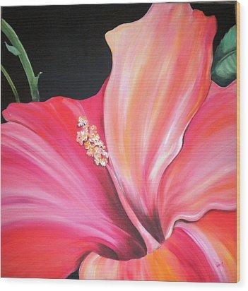 Hibiscus Wood Print by Debi Starr