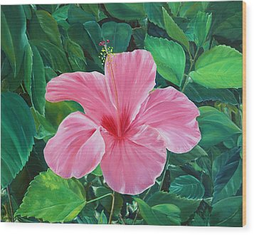 Wood Print featuring the painting Hibiscus by Elizabeth Lock