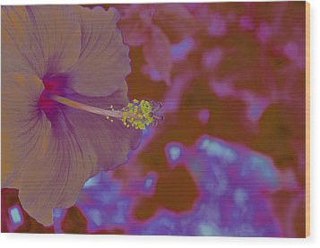 Hibiscus Gllow Wood Print by Lucrecia Cuervo