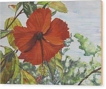 Hibiscus St Thomas Wood Print