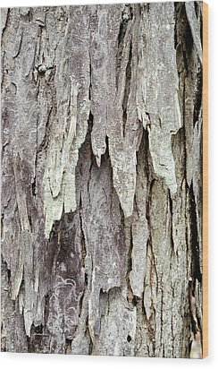 Wood Print featuring the photograph Hickory Tree Bark Abstract by Christina Rollo