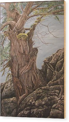 Hidden Art Juniper Wood Print by Cindy Wright