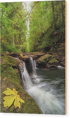 Hidden Falls At Rock Creek Wood Print by David Gn