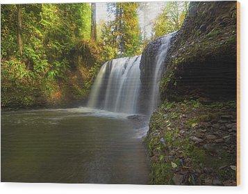 Hidden Falls In Rock Creek Wood Print by David Gn
