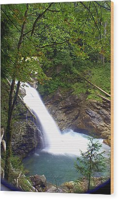 Hidden Falls Wood Print by Marty Koch