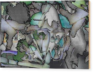 Hidden Image Wood Print