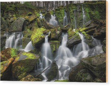 Wood Print featuring the photograph Hidden Mossy Falls by Bill Wakeley