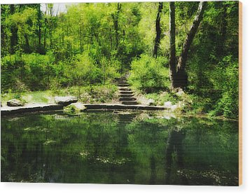 Hidden Pond At Schuylkill Valley Nature Center Wood Print by Bill Cannon