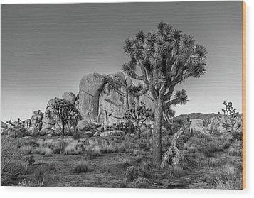 Hidden Valley Rock Wood Print by Peter Tellone