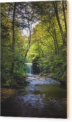 Wood Print featuring the photograph Hidden Wonders by Marvin Spates