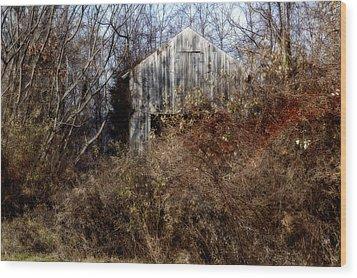 Hide A Barn Wood Print by Ross Powell
