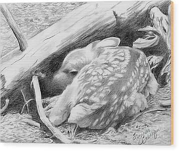 Hiding In Plain Sight - White Tail Deer Fawn Wood Print by Suzanne Schaefer