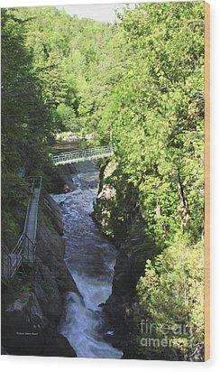 High Falls Gorge Wood Print by Deborah Benoit