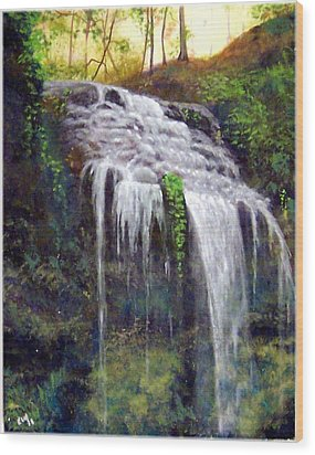 High Falls Wood Print by Kenneth McGarity