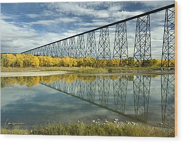 High Level Bridge In Lethbridge Wood Print by Tom Buchanan
