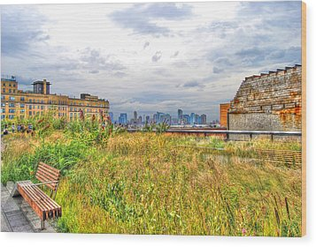 High Line On The Hudson Wood Print by Randy Aveille