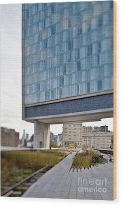 High Line Park And Hotel Wood Print by Eddy Joaquim