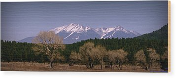 High Peaks Of Arizona Wood Print