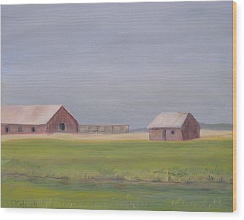 High Plains Wood Print by Patricia Caldwell