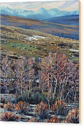 High Sierra Wood Print by Donald Maier