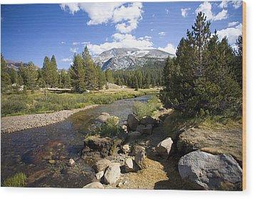 High Sierras Stream Wood Print