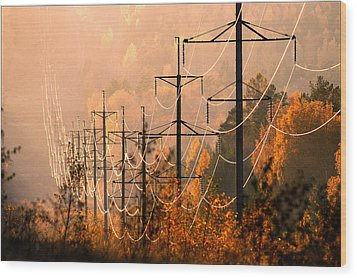 Wood Print featuring the photograph highline shining in the soft light of the evening Sun by Vladimir Kholostykh
