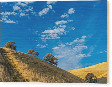 Hiking East Bay Hills Wood Print