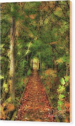 Wood Print featuring the digital art Hiking In Paradise - West Virginia Ap by Dan Carmichael