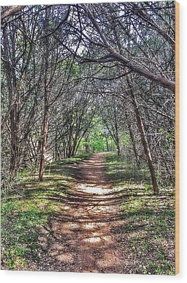Hiking Meridian State Park  Wood Print