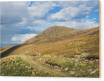 Hiking Trail Across The Mountain Range In County Kerry Wood Print by Semmick Photo
